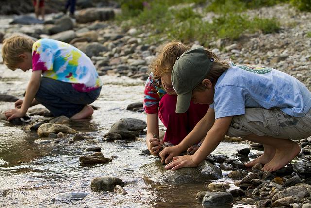 bakat anak berkarier di bidang sains
